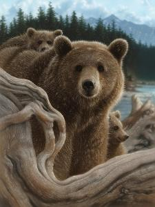 Brown Bears - Backpacking by Collin Bogle