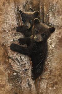 Curious Cubs by Collin Bogle