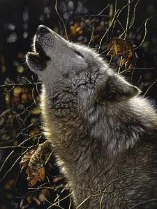 Howling Wolf - Songs of Autumn by Collin Bogle