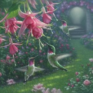 Hummingbird Haven - Square by Collin Bogle