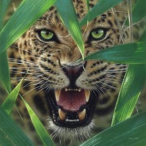 Jaguar - Ambush by Collin Bogle