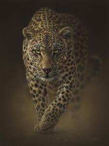 Leopard - Savage by Collin Bogle