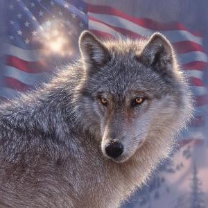Lone Wolf America by Collin Bogle