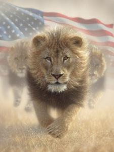 Running Lions America by Collin Bogle