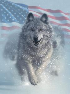 Running Wolves America by Collin Bogle