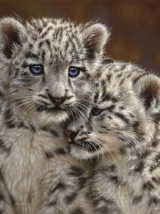 Snow Leopard Cubs - Playmates by Collin Bogle