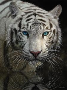 White Tiger - Into the Light by Collin Bogle