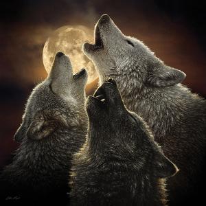 Wolf Trinity by Collin Bogle
