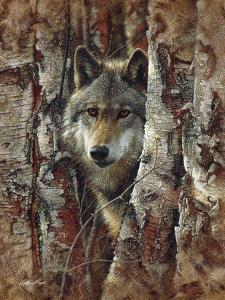 Wolf - Woodland Spirit by Collin Bogle
