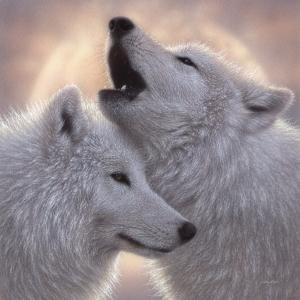 Wolves - Love Song by Collin Bogle