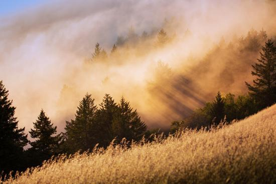 Collision of Light and Fog, Sunset from Mount Tamalpais, San Francisco-Vincent James-Photographic Print
