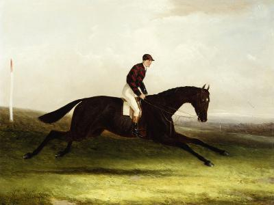 Colonel Pearson's 'Achievement' with J. Chalmer Up in a Landscape-William Joseph Shayer-Giclee Print