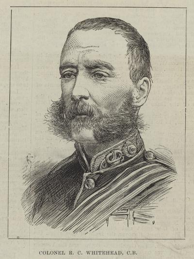Colonel R C Whitehead--Giclee Print