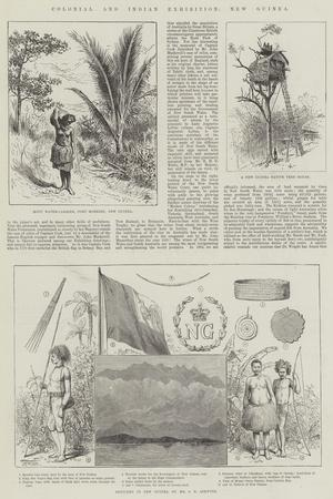 https://imgc.artprintimages.com/img/print/colonial-and-indian-exhibition-new-guinea_u-l-pvwqd70.jpg?p=0