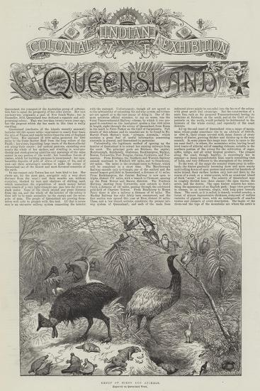 Colonial and Indian Exhibition, Queensland--Giclee Print