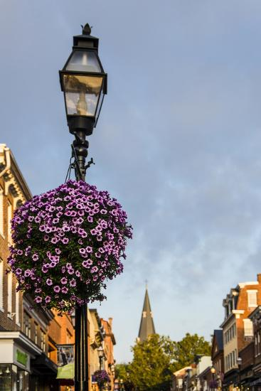 Colonial Architecture in Historic Annapolis, Maryland-Jerry Ginsberg-Photographic Print