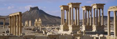 Colonnades on an Arid Landscape, Palmyra, Syria--Photographic Print