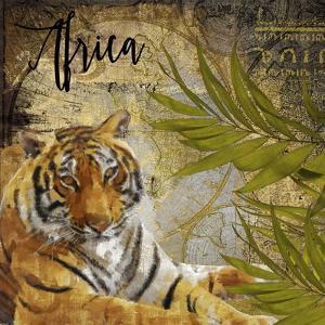 Taste of Africa II by Color Bakery
