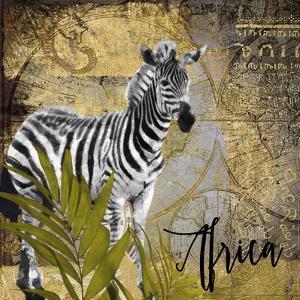 Taste of Africa IV by Color Bakery