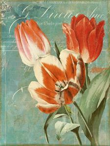 Tulips Ablaze II by Color Bakery