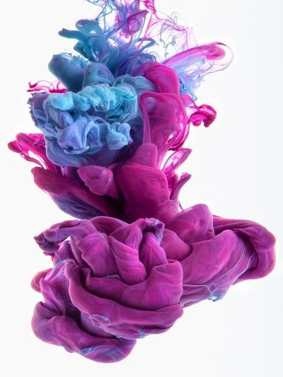 Color Dop-sanjanjam-Photographic Print