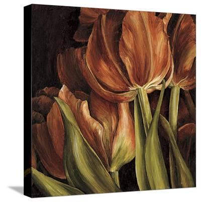 Color Harmony I-Linda Thompson-Stretched Canvas Print