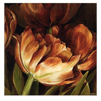 Color Harmony II-Linda Thompson-Art Print