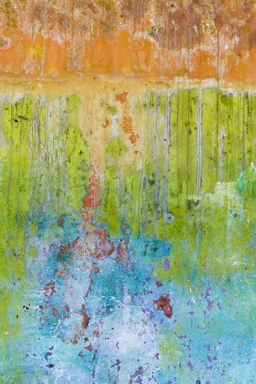 Color I-Kathy Mahan-Photographic Print