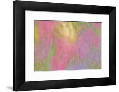 Color Impressions II-William Neill-Framed Giclee Print