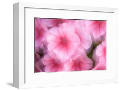 Color Impressions III-William Neill-Framed Giclee Print