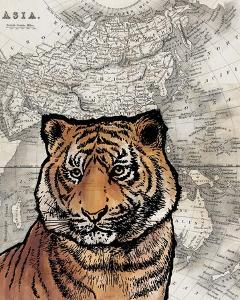 Asian Tiger by Color Me Happy