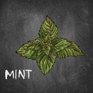 Mint on Chalkboard by Color Me Happy