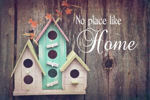 No Place Like Home Bird Houses by Color Me Happy