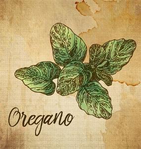 Oregano on Burlap by Color Me Happy