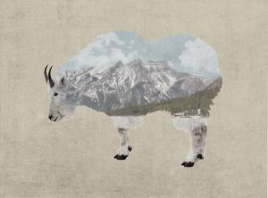 Rocky Mountain Goat by Color Me Happy