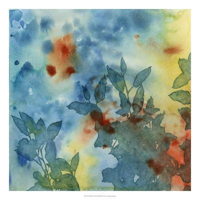 Color Play II-Megan Meagher-Premium Giclee Print