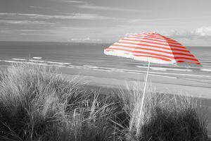 Color Pop, Beach umbrella on the beach, Saunton, North Devon, England, Living Coral