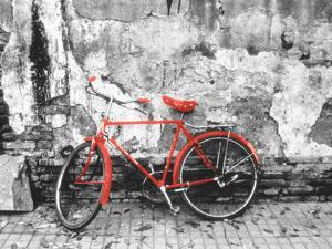 Color Pop, Bike against wall, Beijing, China, Living Coral