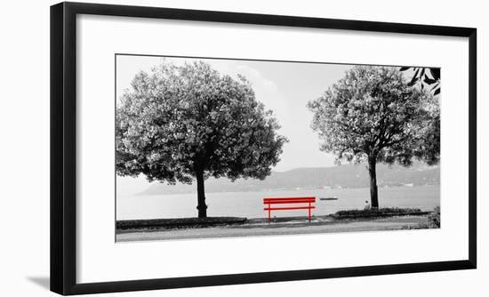 Color Pop, Blooming trees at the lakeside, Lake Maggiore, Italy, Living Coral--Framed Photographic Print