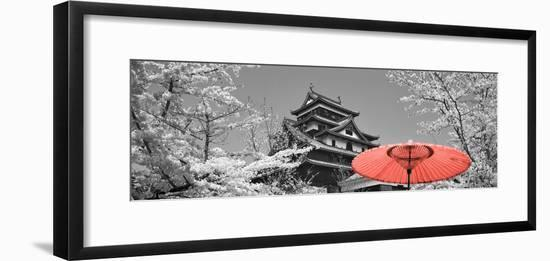 Color Pop, Cherry Blossom Matsue Castle Japan, Living Coral--Framed Photographic Print