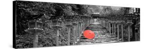 Color Pop, Kibune Shrine Kyoto Japan, Living Coral