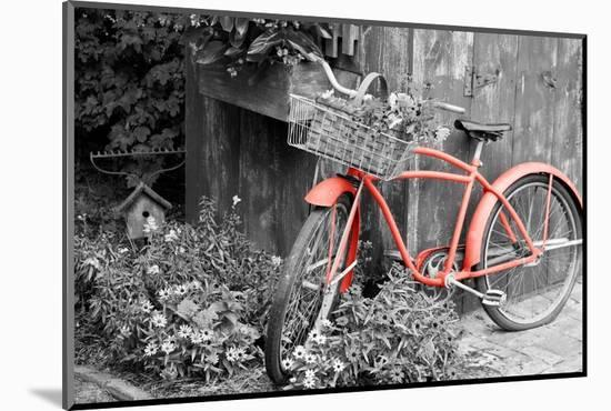 Color Pop, Old bicycle with flower basket next to old outhouse garden shed, Marion County, IL--Mounted Photographic Print