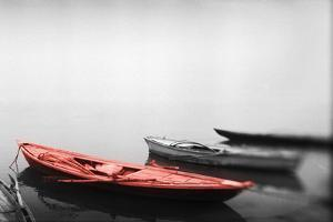 Color Pop, Row boats in a river, Ganges River, Varanasi, Uttar Pradesh, India, Living Coral