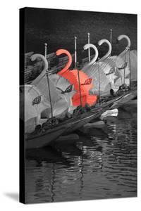 Color Pop, Swan boats in a river, Boston Public Garden, Boston, Massachusetts, USA, Living Coral