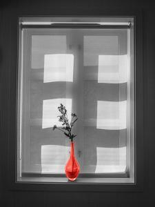 Color Pop, Window and flower vase, Living Coral