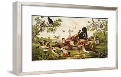 Color Print of Birds Feasting on a Fruit Pie--Framed Giclee Print