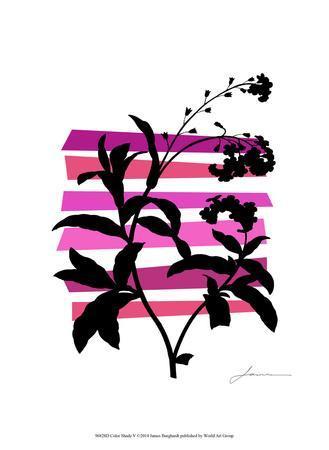 https://imgc.artprintimages.com/img/print/color-shade-v_u-l-f7mjo70.jpg?p=0