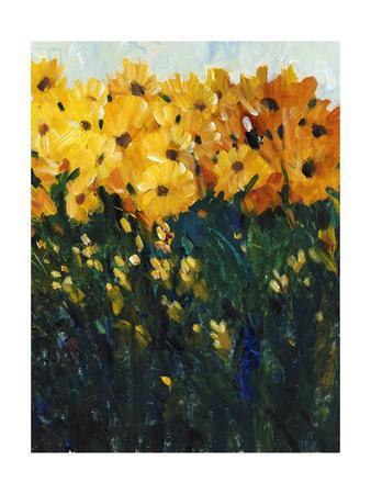 https://imgc.artprintimages.com/img/print/color-spectrum-flowers-ii_u-l-q11aixu0.jpg?p=0