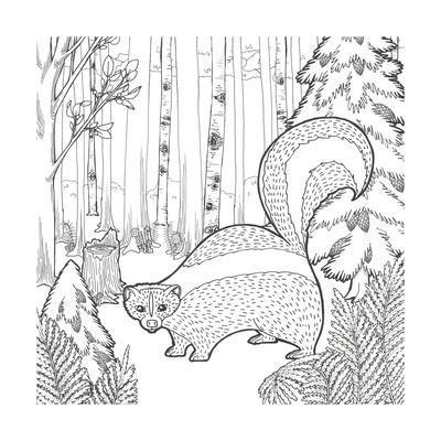 https://imgc.artprintimages.com/img/print/color-the-forest-x_u-l-q1aztfh0.jpg?artPerspective=n