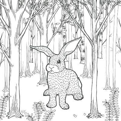 Color the Forest XI-Elyse DeNeige-Art Print
